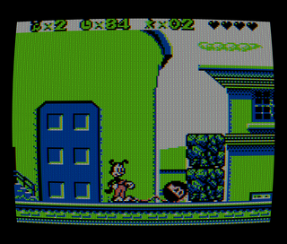 Nintendo Color Game Boy SameBoy Animaniacs