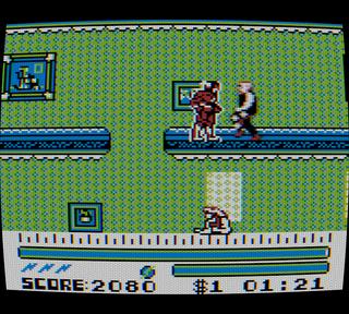 Nintendo Color Gameboy CGB SameBoy Flash