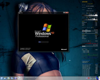 Środowisko Quemu jako virualka dla XP pod Linuxem. [Fot. http://damlab.pl/howto/qemu/]