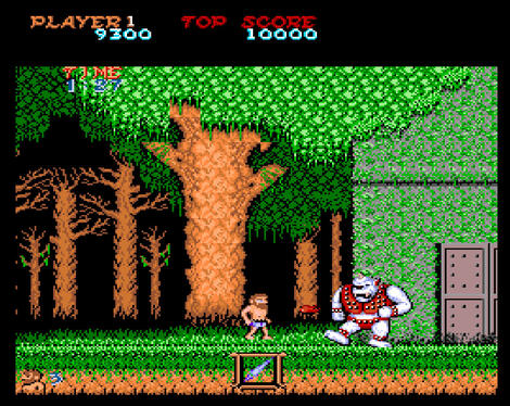 Amiga WinUAE:Ghosts 'N Goblins (a.k.a. Ghosts & Goblins):Capcom Co., Ltd.:Capcom Co., Ltd.:1990: