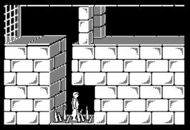 ZX:jSpeccy:Java:Prince of Persia:Demo:Playable:Magicsoft:1994-5[???]