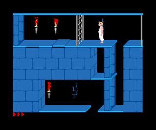 Egzotyczne:Sam Coupe:SimCoupe:Prince of Persia:Revelation:BrøderbundSoftware,Inc.:BrøderbundSoftware,Inc.:1990